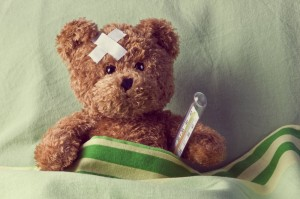 dental emergency bear